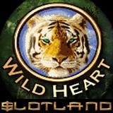 slotland-wildheart-160.jpg