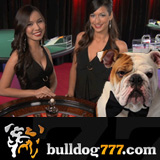 Bulldog777 Casino Introduces Live Dealer Games from Microgaming
