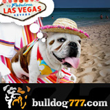Bulldog777 Awards Master of 777an Epic Las Vegas Vacation with Cash and Show Tickets