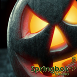 Springbok Casino Players Earn a Free Bonus This Month by Using Up All Their Casino Bonus Coupons
